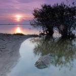 Jeziorsko