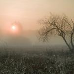 Podlasie - wschód słońca na łąkach we wsi Rybaki