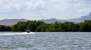 Laguna de la Restinga